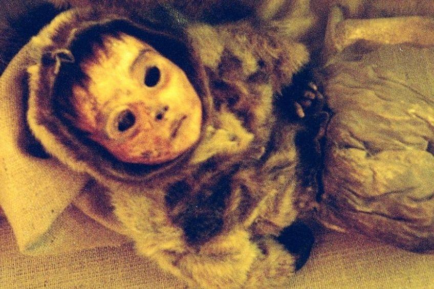 Qilakitsocka mumie